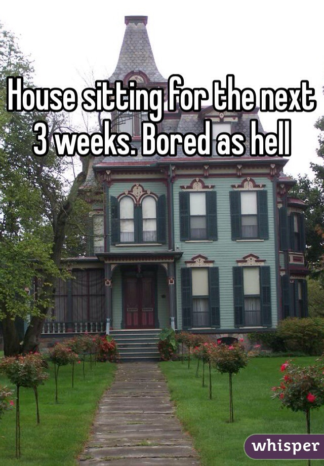 House sitting for the next 3 weeks. Bored as hell