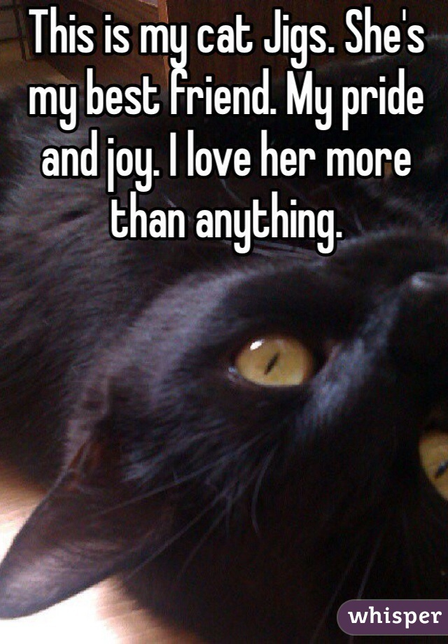 This is my cat Jigs. She's my best friend. My pride and joy. I love her more than anything.