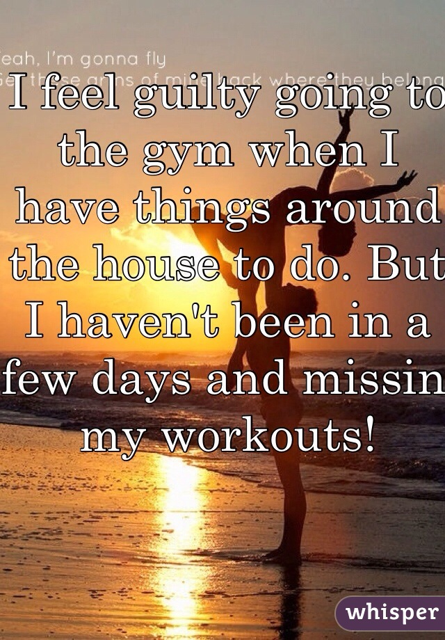 I feel guilty going to the gym when I have things around the house to do. But I haven't been in a few days and missin my workouts!