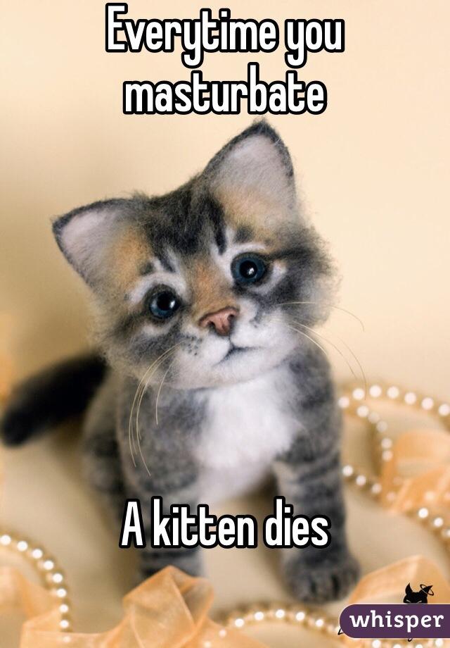 Every time you masturbate kitten