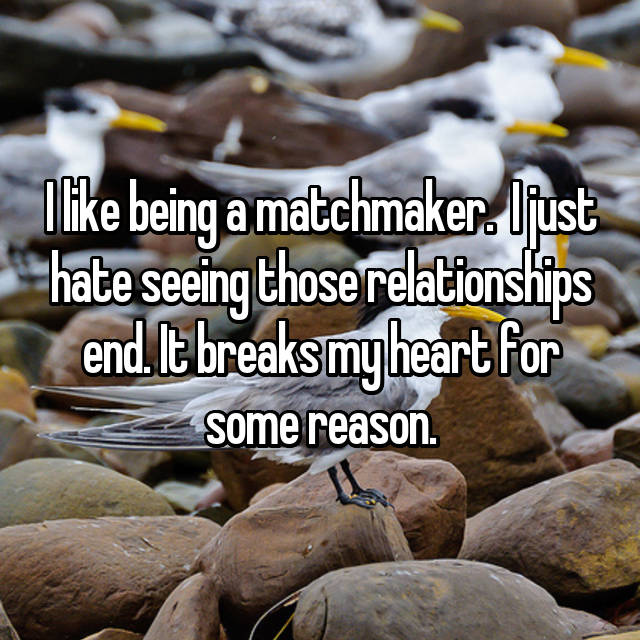 I like being a matchmaker.  I just hate seeing those relationships end. It breaks my heart for some reason.