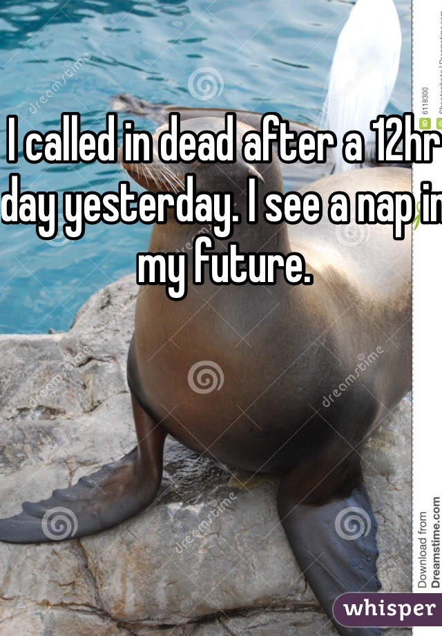 I called in dead after a 12hr day yesterday. I see a nap in my future.