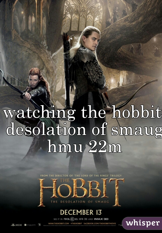 watching the hobbit desolation of smaug hmu 22m