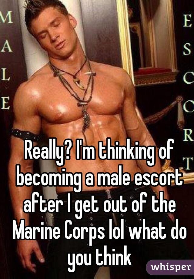 Become male escort no registration fee pics 259