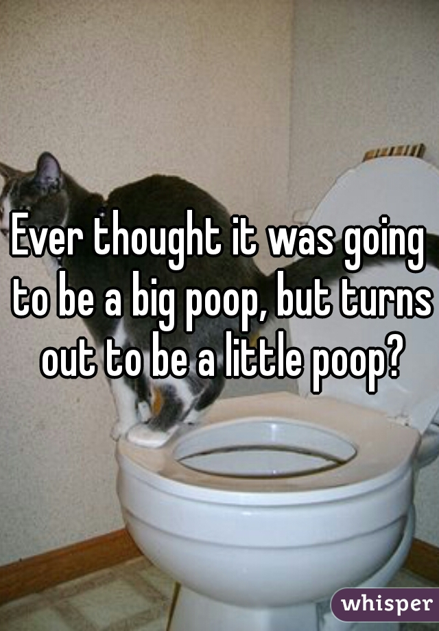 Ever thought it was going to be a big poop, but turns out to be a little poop?