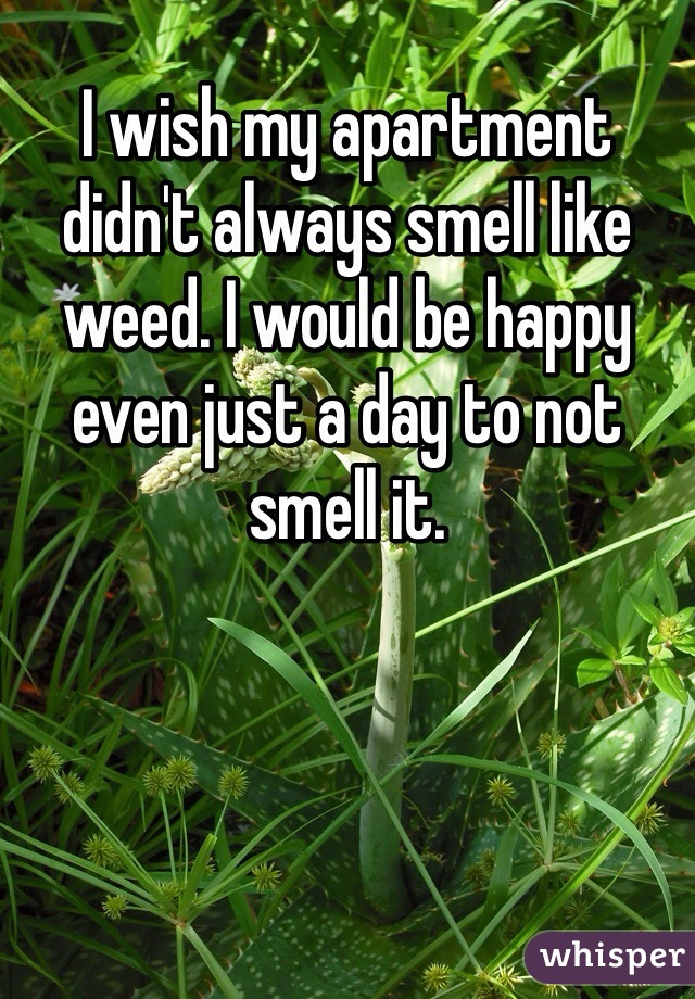 I wish my apartment didn't always smell like weed. I would be happy even just a day to not smell it.