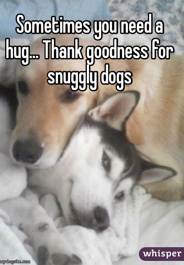 Sometimes you need a hug... Thank goodness for snuggly dogs