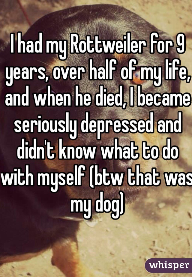 I had my Rottweiler for 9 years, over half of my life, and when he died, I became seriously depressed and didn't know what to do with myself (btw that was my dog)