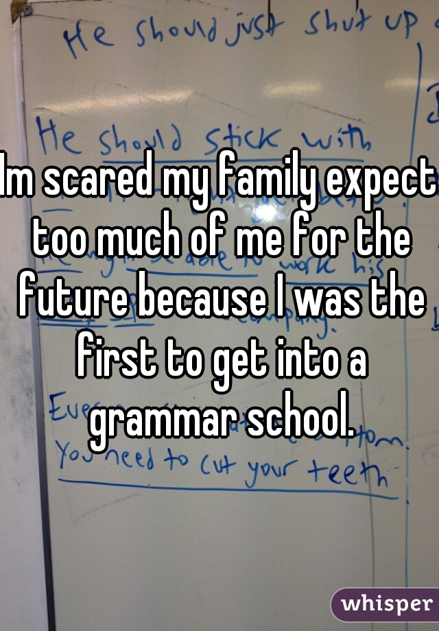 Im scared my family expect too much of me for the future because I was the first to get into a grammar school.