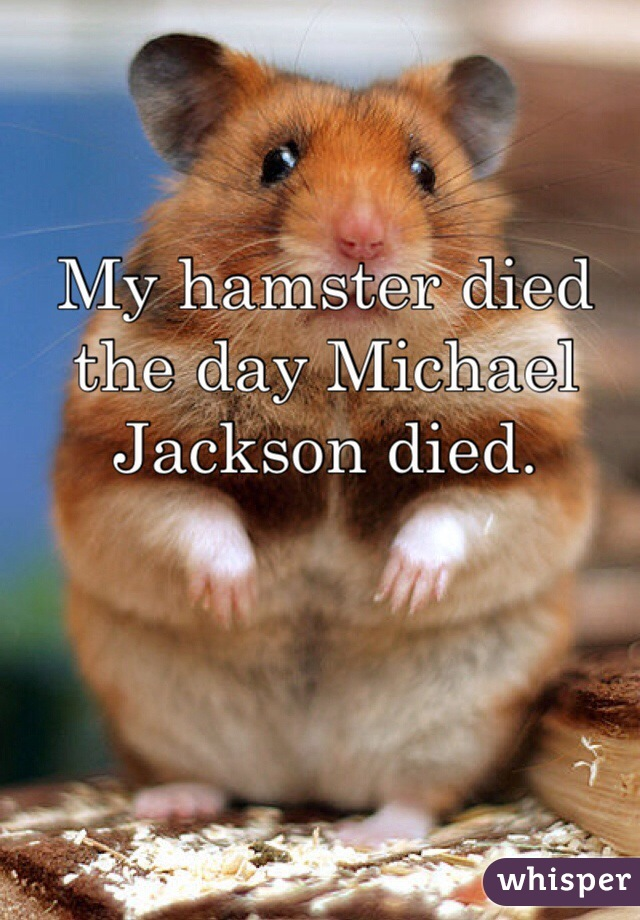 My hamster died the day Michael Jackson died.