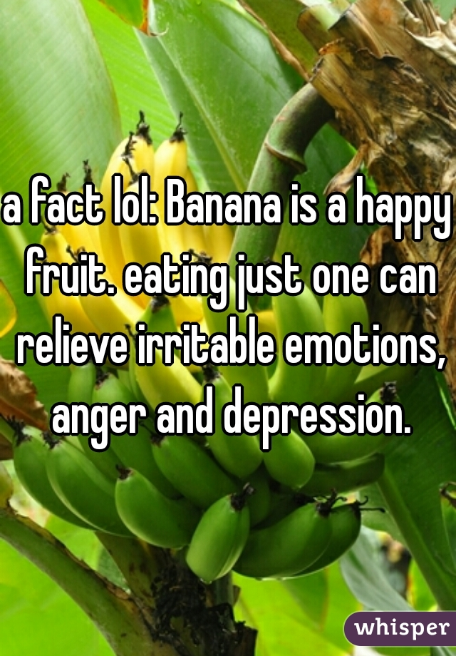 a fact lol: Banana is a happy fruit. eating just one can relieve irritable emotions, anger and depression.