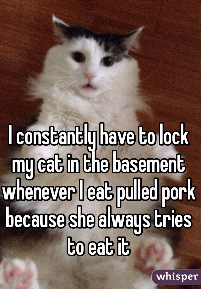 I constantly have to lock my cat in the basement whenever I eat pulled pork because she always tries to eat it