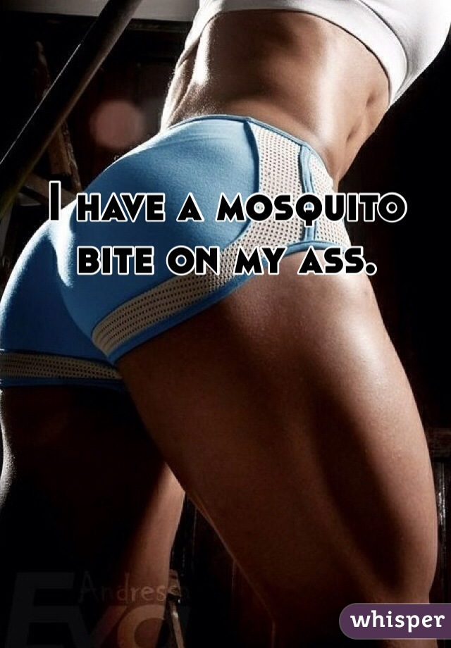I have a mosquito bite on my ass.
