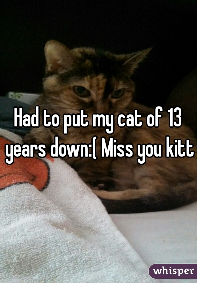 Had to put my cat of 13 years down:( Miss you kitty