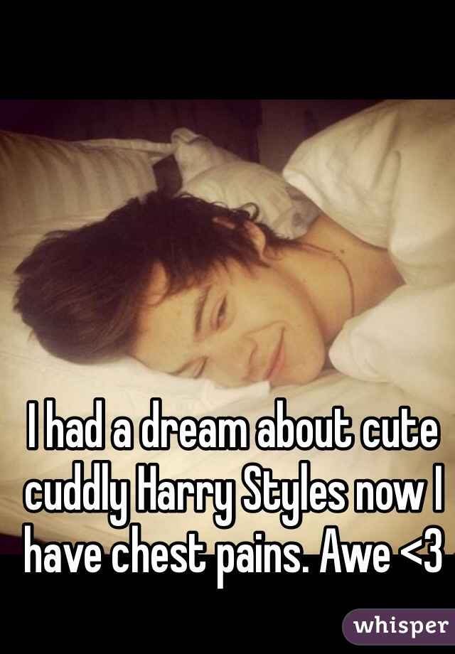 I had a dream about cute cuddly Harry Styles now I have chest pains. Awe <3