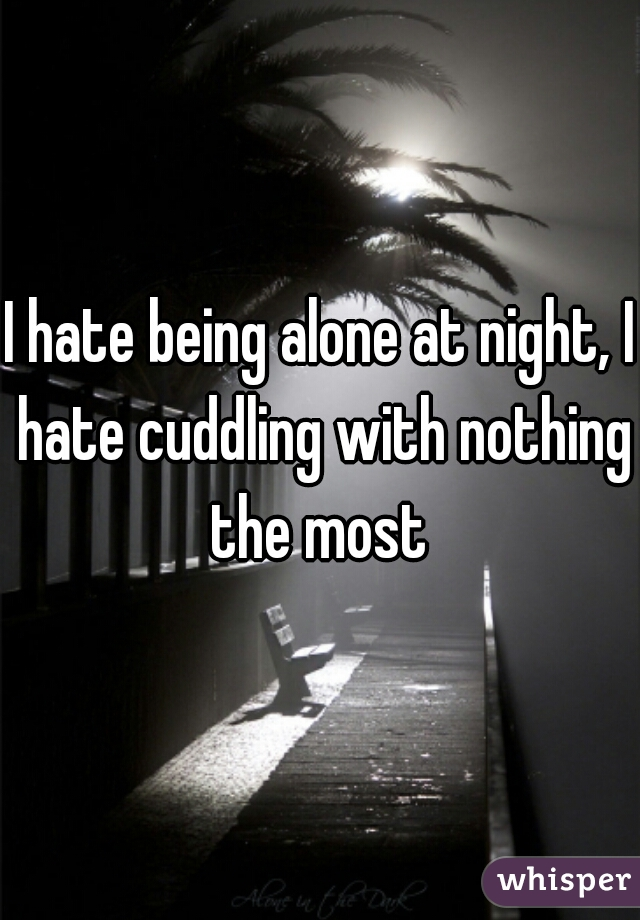 I hate being alone at night, I hate cuddling with nothing the most