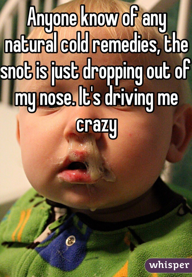 Anyone know of any natural cold remedies, the snot is just dropping out of my nose. It's driving me crazy