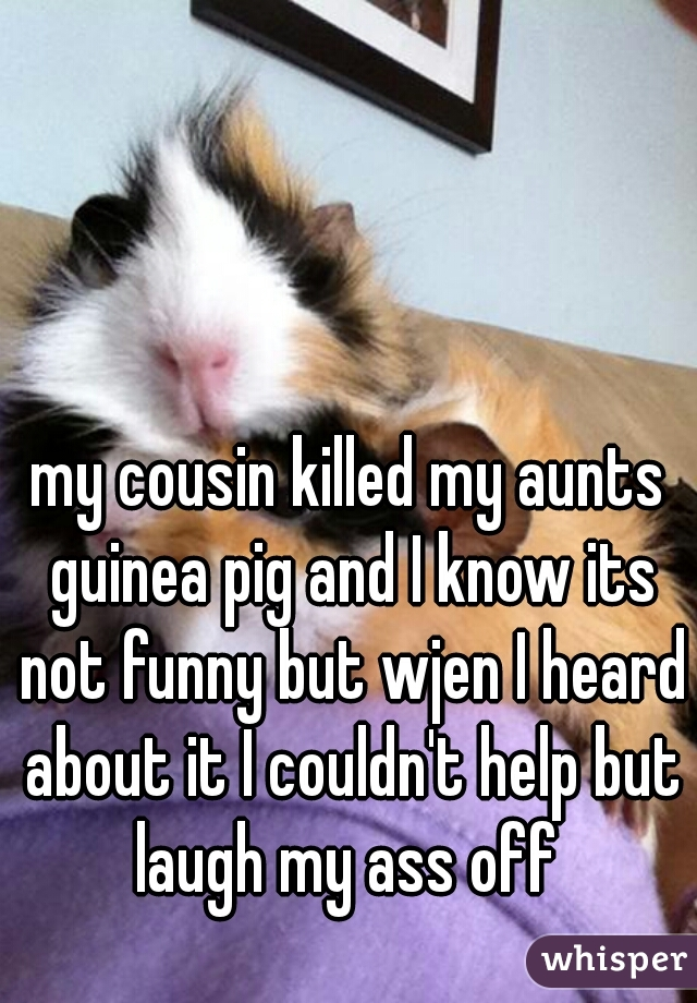 my cousin killed my aunts guinea pig and I know its not funny but wjen I heard about it I couldn't help but laugh my ass off