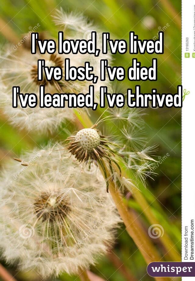 I've loved, I've lived I've lost, I've died I've learned, I've thrived