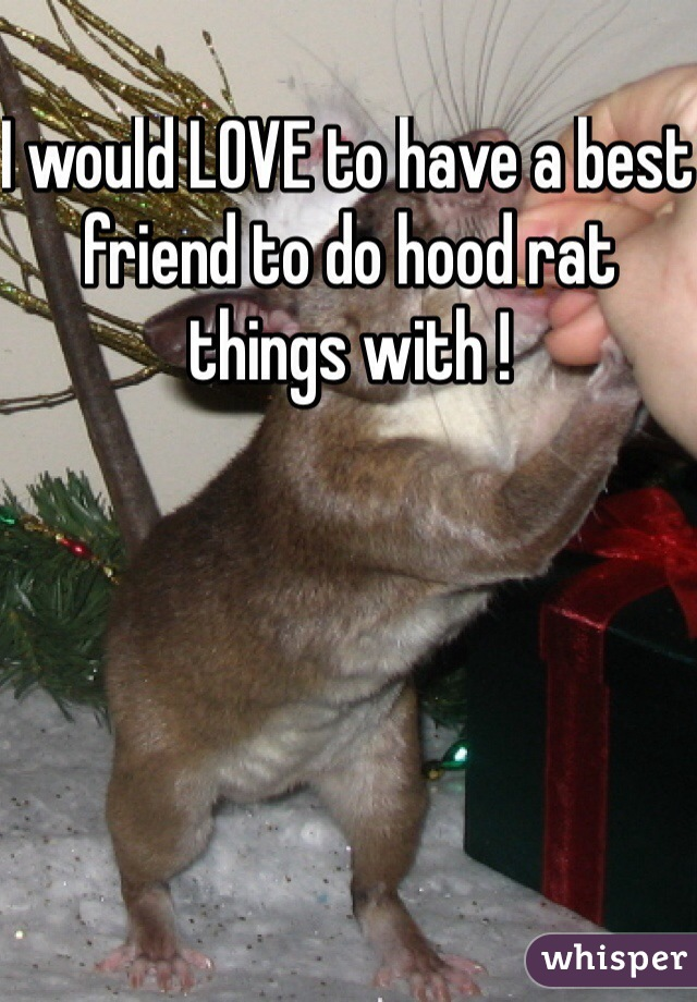 I would LOVE to have a best friend to do hood rat things with !