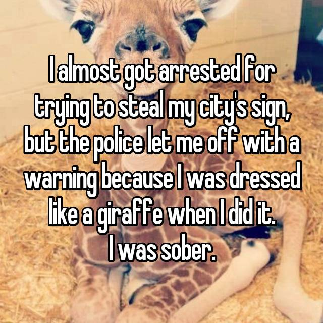 I almost got arrested for trying to steal my city's sign, but the police let me off with a warning because I was dressed like a giraffe when I did it. I was sober.