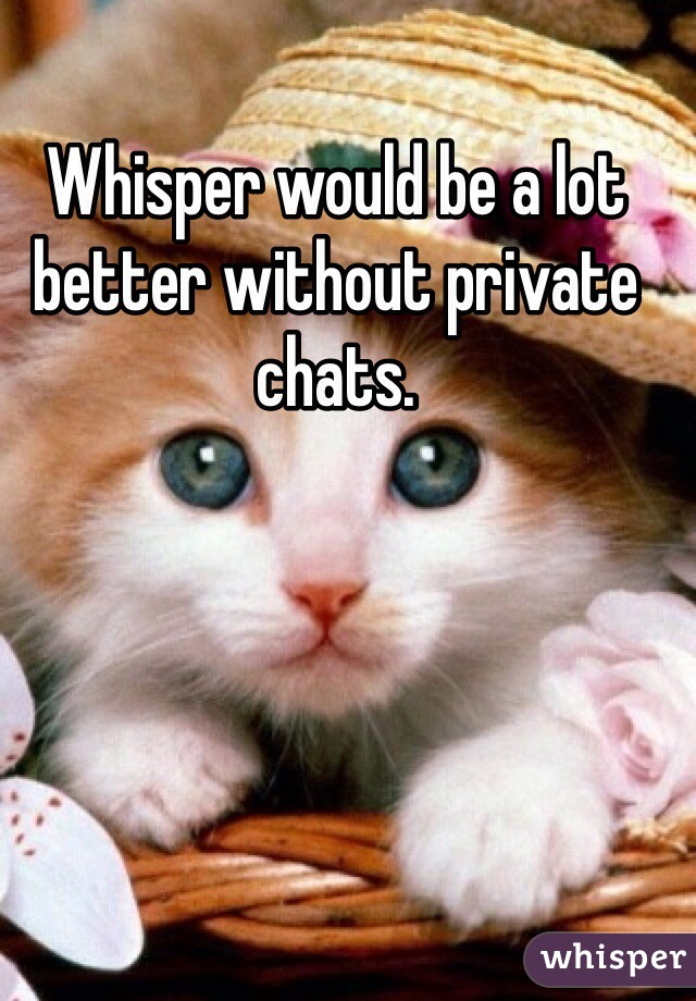 Whisper would be a lot better without private chats.