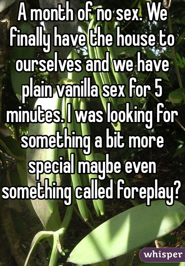 A month of no sex. We finally have the house to ourselves and we have plain vanilla sex for 5 minutes. I was looking for something a bit more special maybe even something called foreplay?