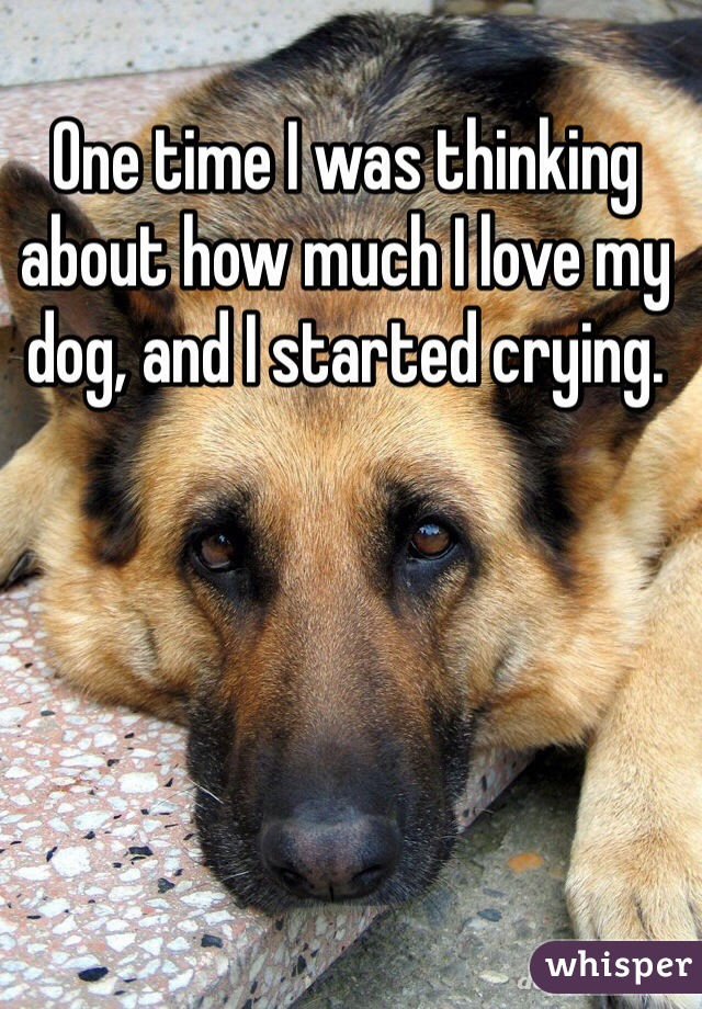 One time I was thinking about how much I love my dog, and I started crying.