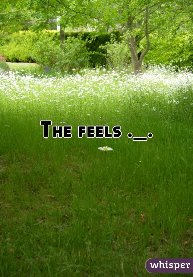 The feels ._.