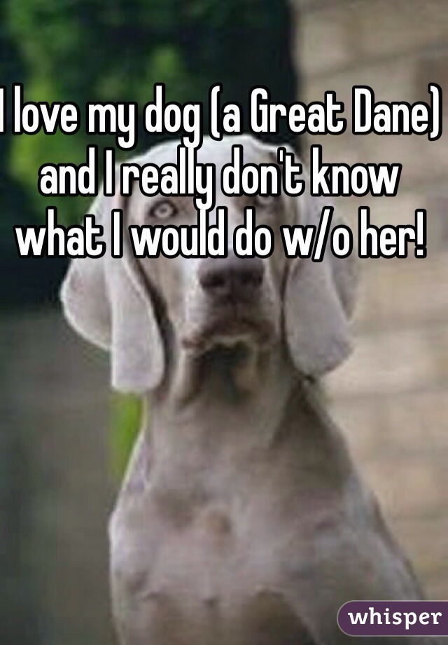 I love my dog (a Great Dane) and I really don't know what I would do w/o her!