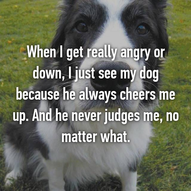 When I get really angry or down, I just see my dog because he always cheers me up. And he never judges me, no matter what.