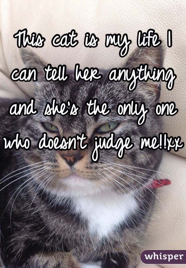 This cat is my life I can tell her anything and she's the only one who doesn't judge me!!xx