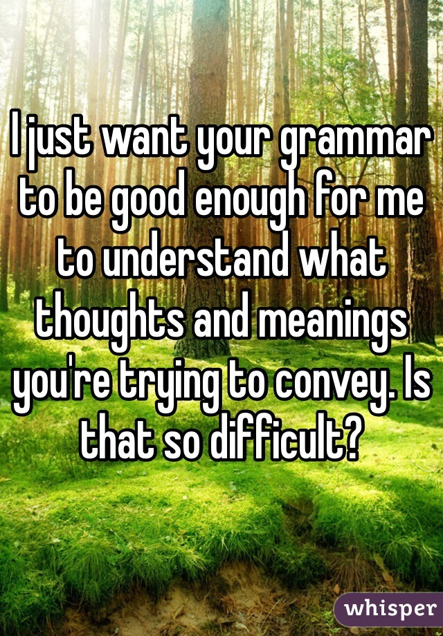 I just want your grammar to be good enough for me to understand what thoughts and meanings you're trying to convey. Is that so difficult?