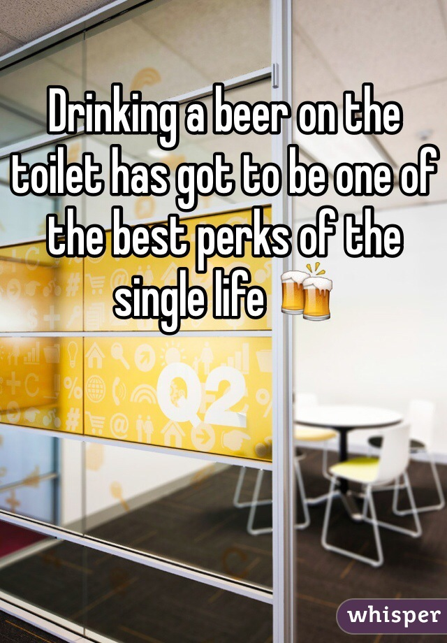 Drinking a beer on the toilet has got to be one of the best perks of the single life 🍻