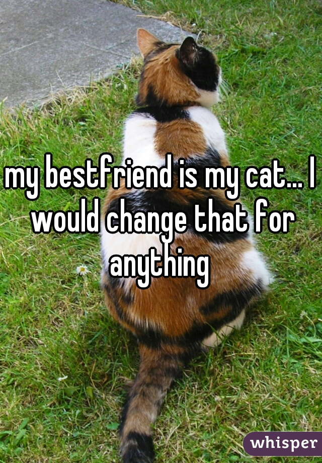 my bestfriend is my cat... I would change that for anything