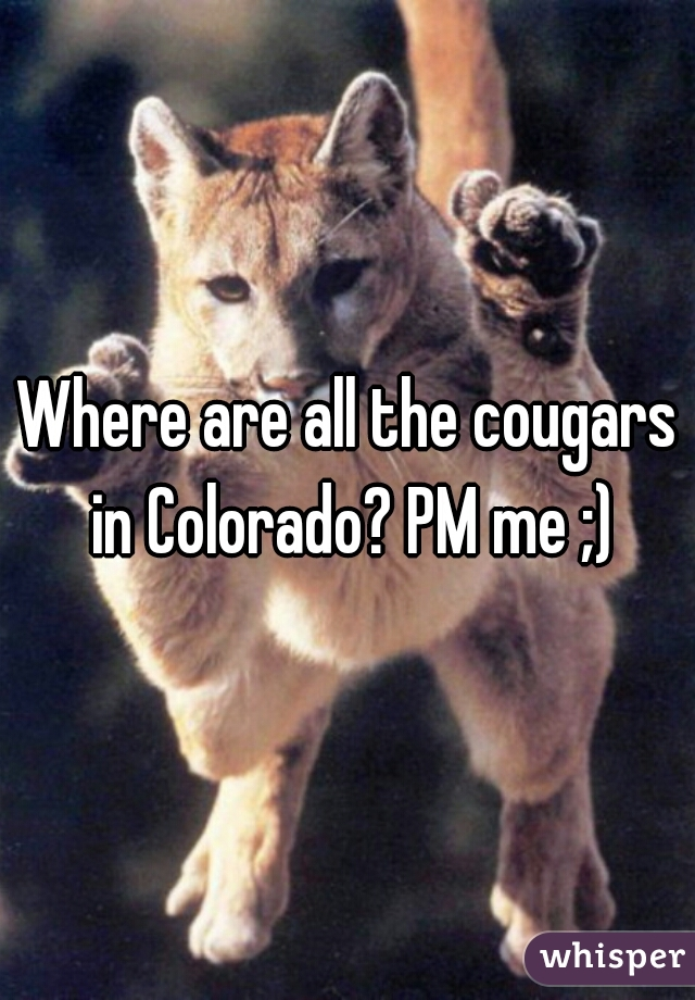 Where are all the cougars in Colorado? PM me ;)