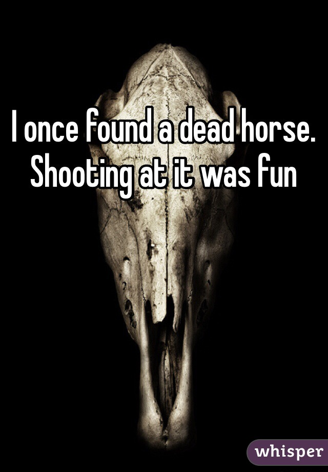 I once found a dead horse. Shooting at it was fun