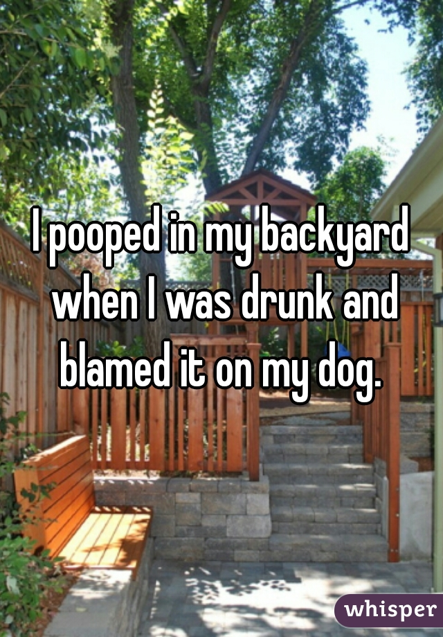 I pooped in my backyard when I was drunk and blamed it on my dog.