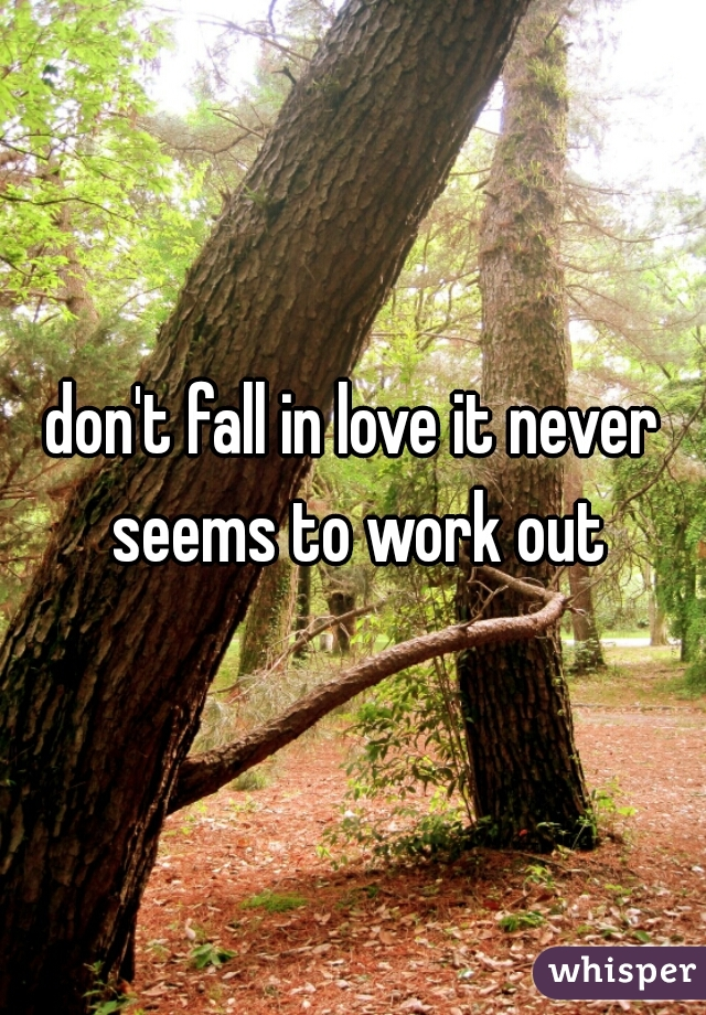 don't fall in love it never seems to work out