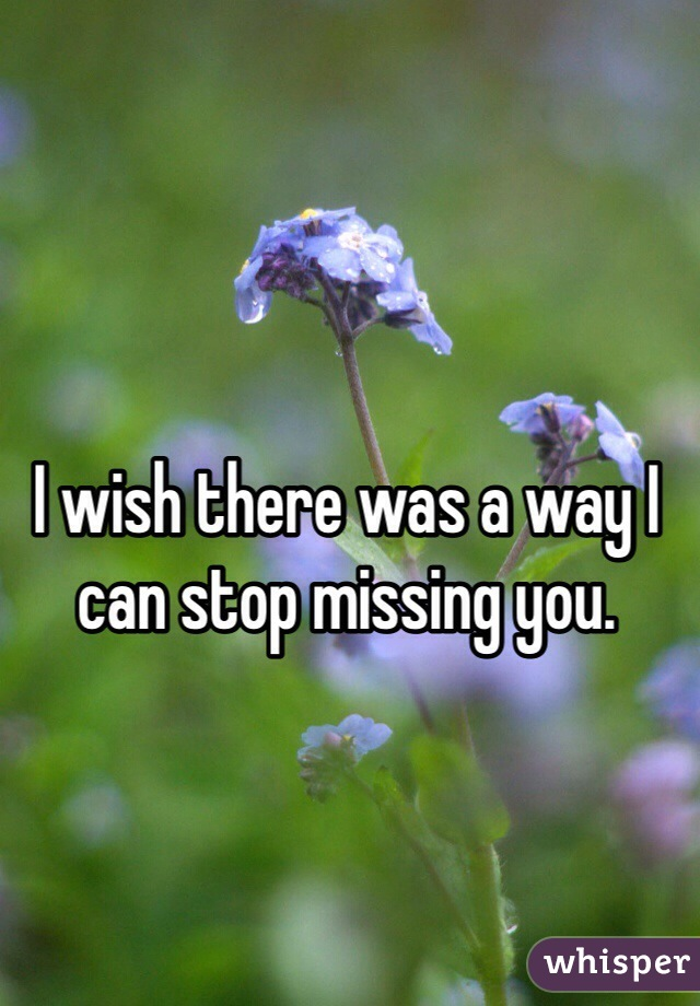 I wish there was a way I can stop missing you.