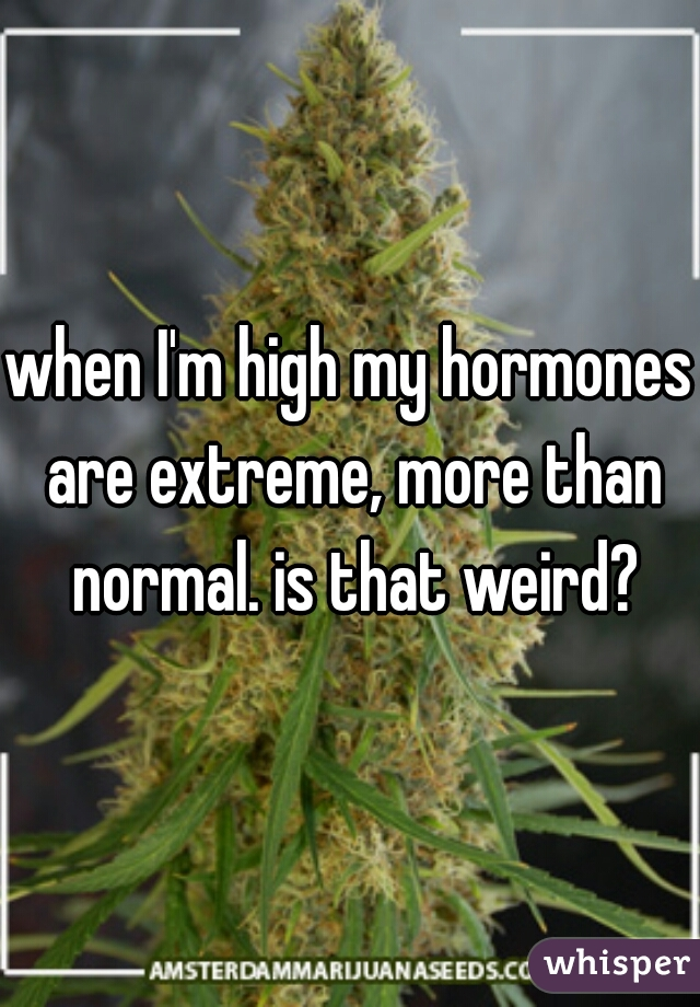 when I'm high my hormones are extreme, more than normal. is that weird?