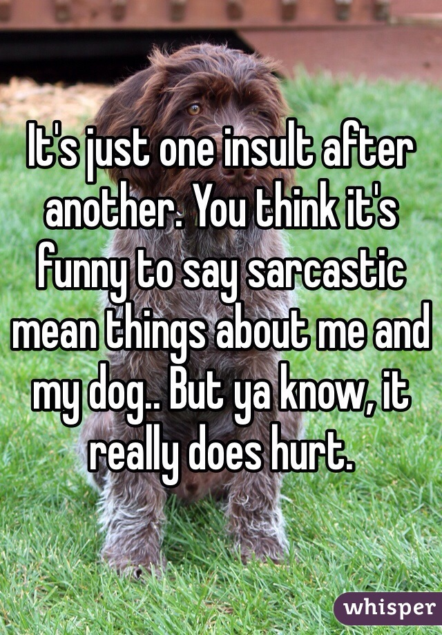 It's just one insult after another. You think it's funny to say sarcastic mean things about me and my dog.. But ya know, it really does hurt.