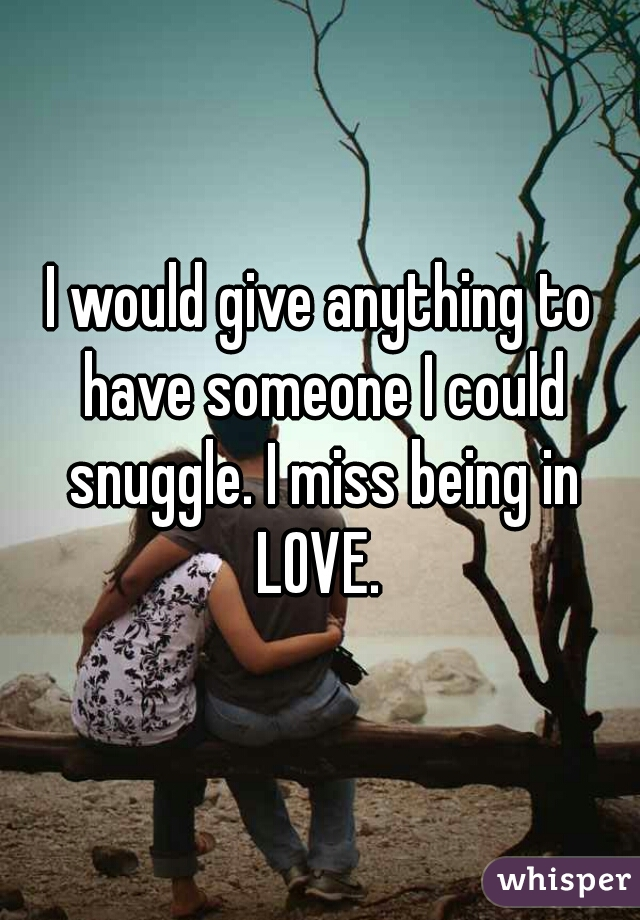 I would give anything to have someone I could snuggle. I miss being in LOVE.