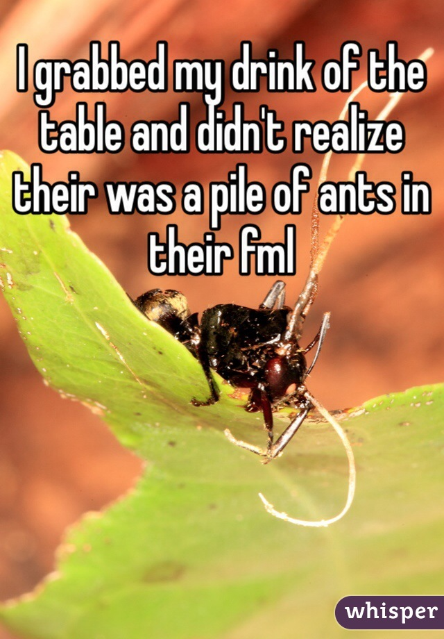 I grabbed my drink of the table and didn't realize their was a pile of ants in their fml