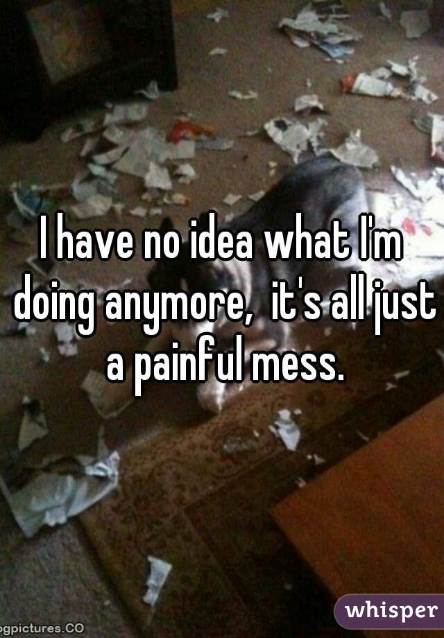 I have no idea what I'm doing anymore,  it's all just a painful mess.