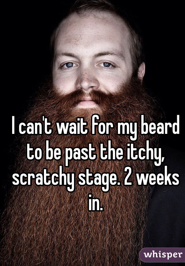 I can't wait for my beard to be past the itchy, scratchy stage. 2 weeks in.
