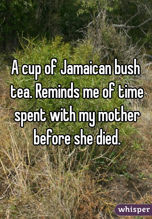 A cup of Jamaican bush tea. Reminds me of time spent with my mother before she died.