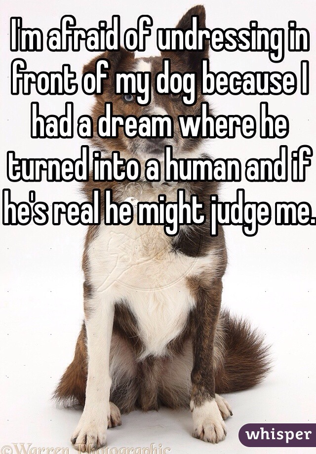 I'm afraid of undressing in front of my dog because I had a dream where he turned into a human and if he's real he might judge me.