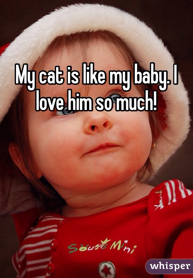 My cat is like my baby. I love him so much!