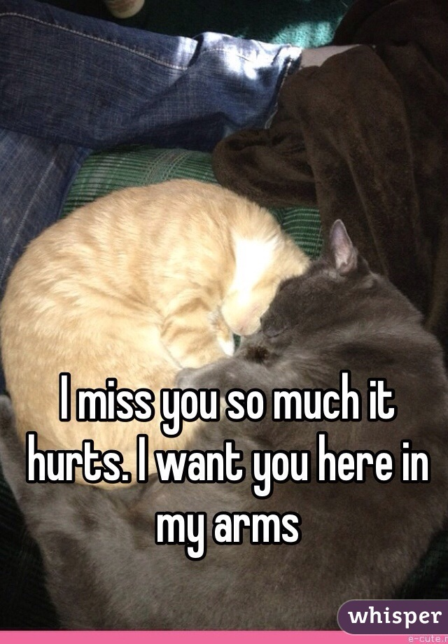 I miss you so much it hurts. I want you here in my arms
